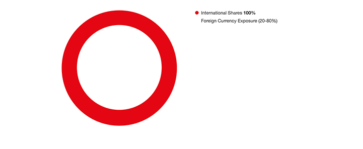 International shares pie chart